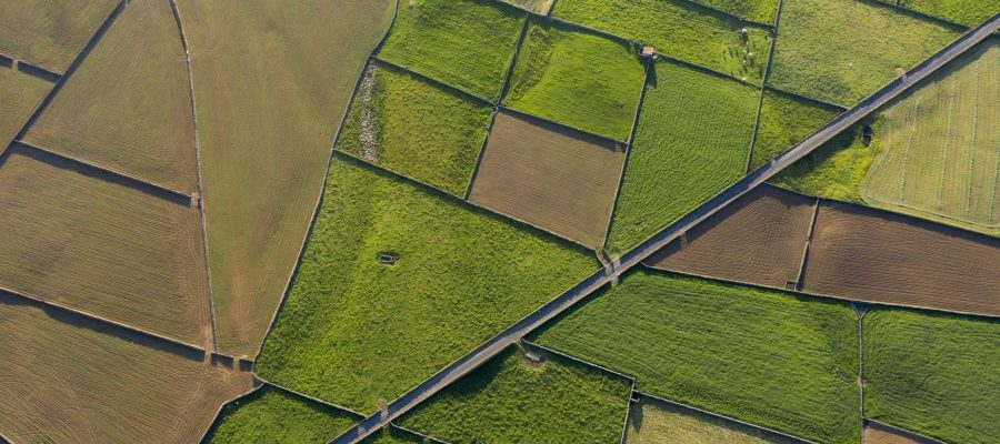 aerial views on the typical abstract countryside of the east of Terceira Island, one of the islands of the Açores (Azores) archipelago. Serra da Ribeirinha and The Miradouro da Serra do Cume offer great views on these abstract dairy cattle farming fields with stone walls, Portugal
